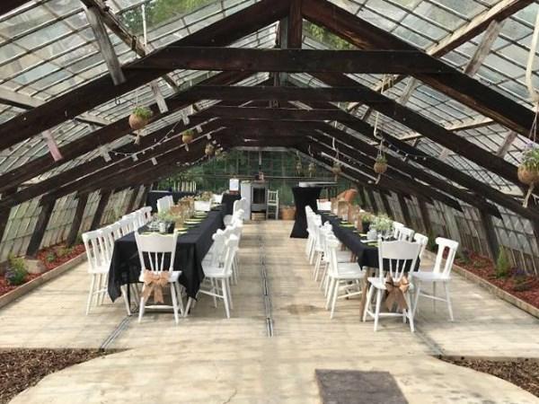 Dinner in greenhouse